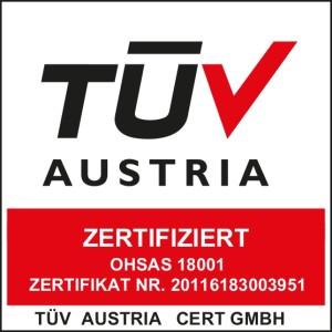 sacchi pallets_logo 18001 ohsas tuv_18